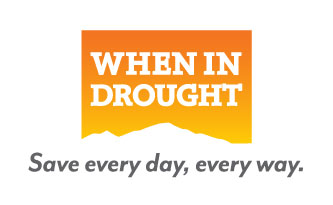 When In Drought Logo