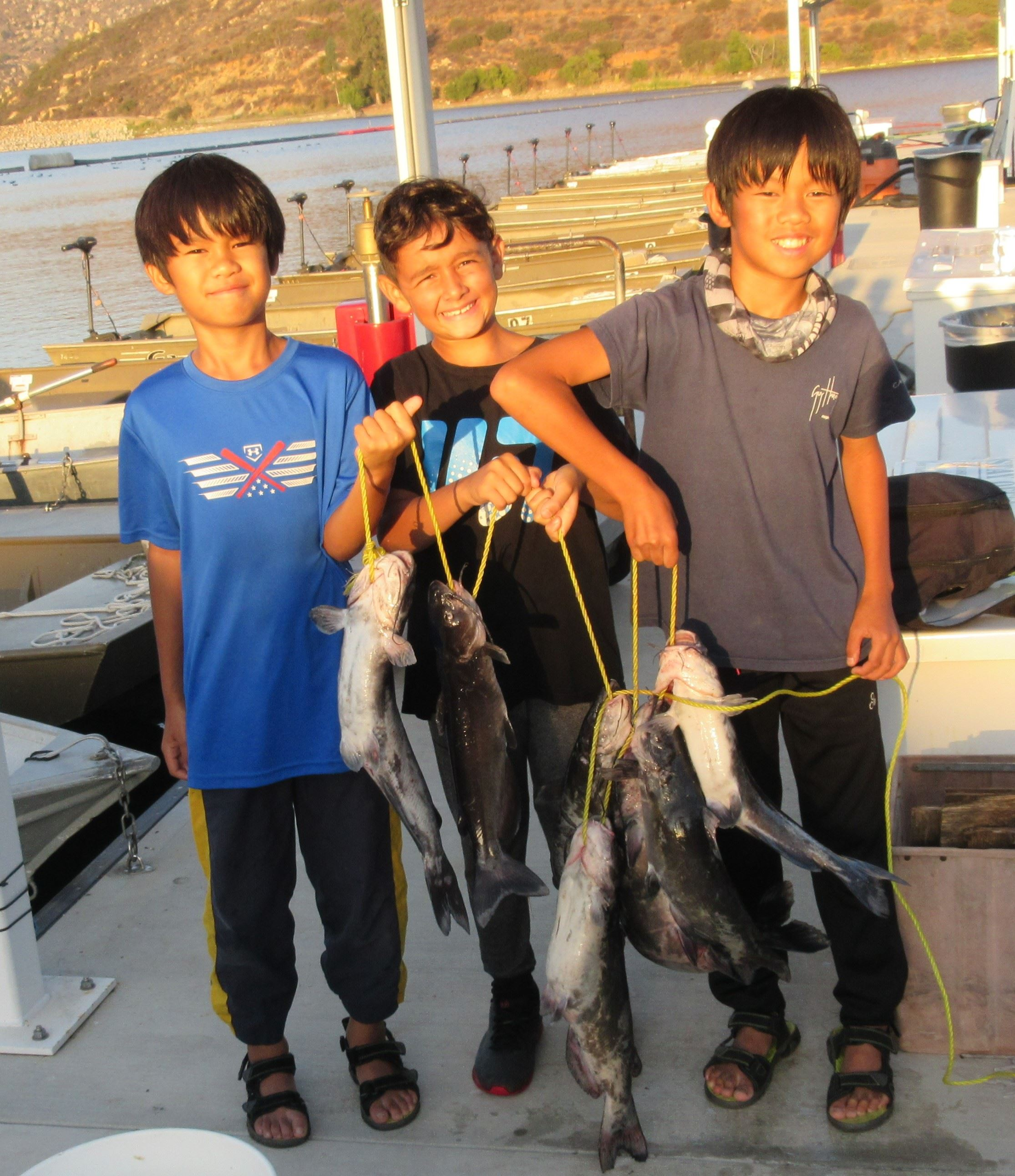 Matthew, Marcus, Aidan 7 cats, largest 6lbs. Mackerel, chicken Liver, log boom Mira Mesa