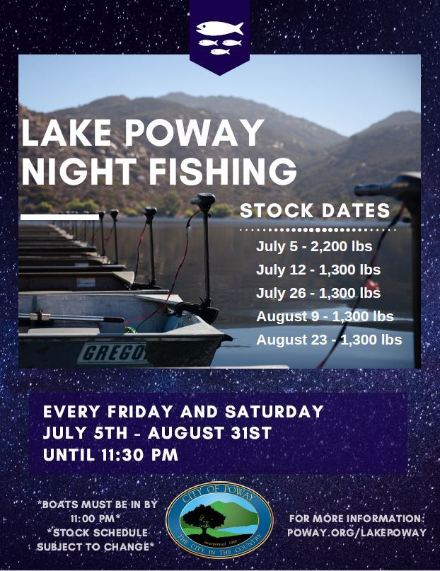 Night Fishing Flyer 2019