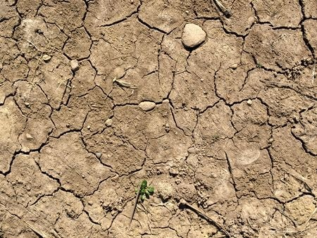 drought conditions.jpg